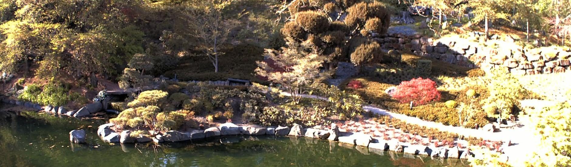 Japanese Garden: Upper Pond