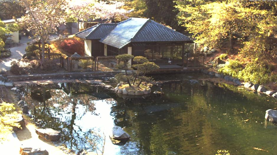 Japanese Garden: Tea House